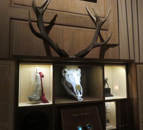 museum of the hunt Paris