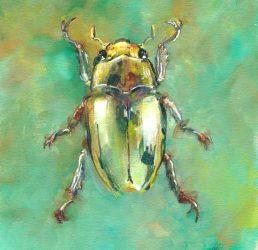 Gold Bug
